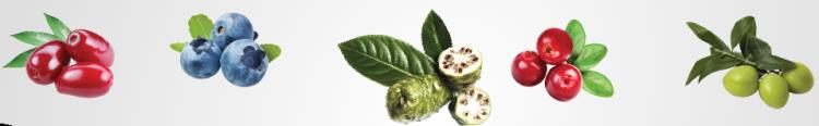 ingredients-fruits